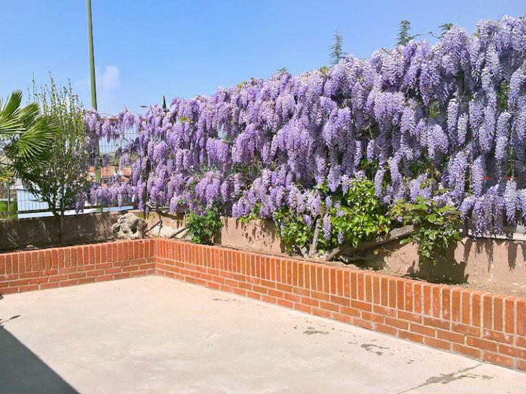 jardineria_02