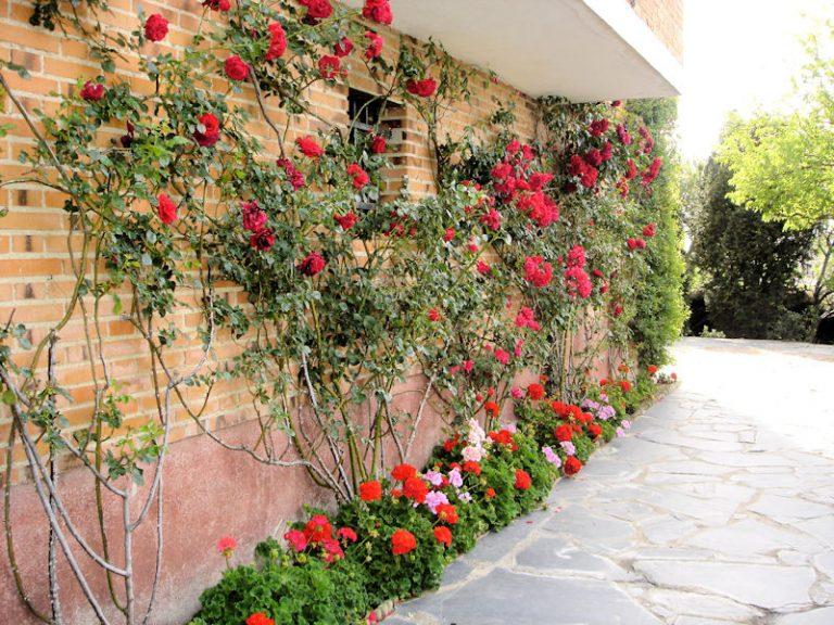 jardineria_09
