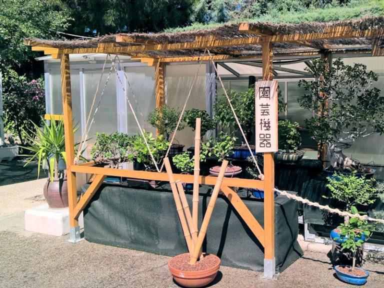jardineria_10